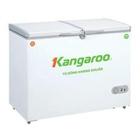 Giá Tủ đông Kangaroo KG418A2