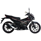 Giá Xe máy Suzuki Raider R150 2017