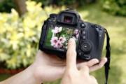 Chọn máy chụp ảnh nào cho tết nguyên đán 2018