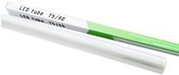 Bóng đèn led Top DP-T5-13W