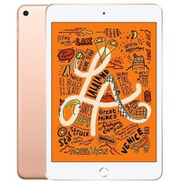 Apple iPad mini 5 Wifi 64Gb 7.9Inch