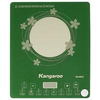Bếp từ Kangaroo KG461I