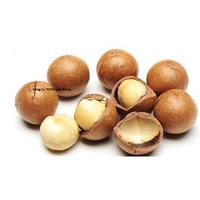 Hạt mắc ca Macadamia nứt vỏ Úc