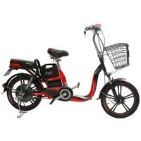 Xe đạp điện Pega Zinger Color 2