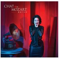 Chat Với Mozart Vol.2 - Mỹ Linh