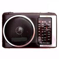 Máy nghe nhạc Radio SW701