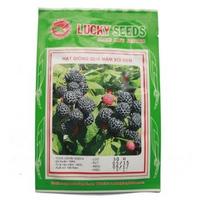 Bộ gói hạt giống Dâu ta đen (quả mâm xôi)(phuc bon tu)