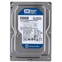 Ổ cứng HDD Western Digital 250GB Caviar Blue