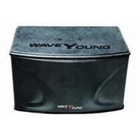Loa Karaoke WaveYoung PS 801